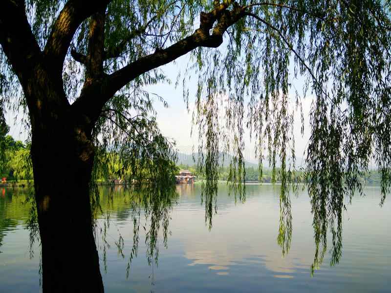 Δυτική λίμνη Hangzhou στοκ εικόνα με δικαίωμα ελεύθερης χρήσης