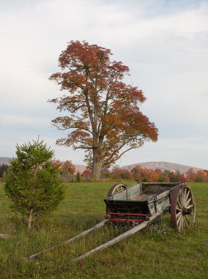 Δυτική Βιρτζίνια φυλλώματος πτώσης στοκ φωτογραφία