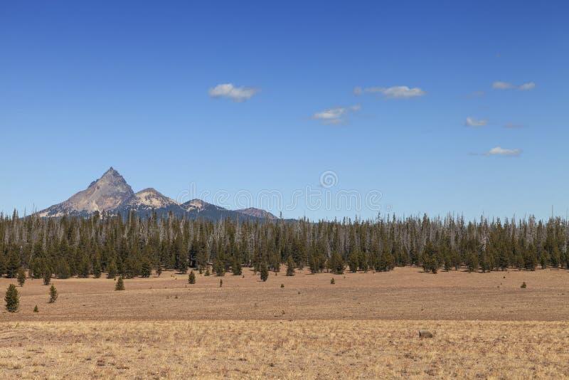 Δυτική ξηρασία στοκ φωτογραφίες