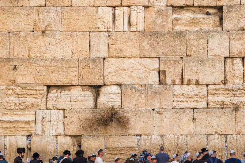Δυτικός τοίχος στην Ιερουσαλήμ, Ισραήλ στοκ φωτογραφίες με δικαίωμα ελεύθερης χρήσης