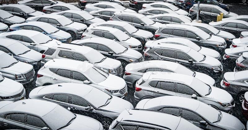 Δωδεκάδες των χιονισμένων αυτοκινήτων στοκ φωτογραφίες