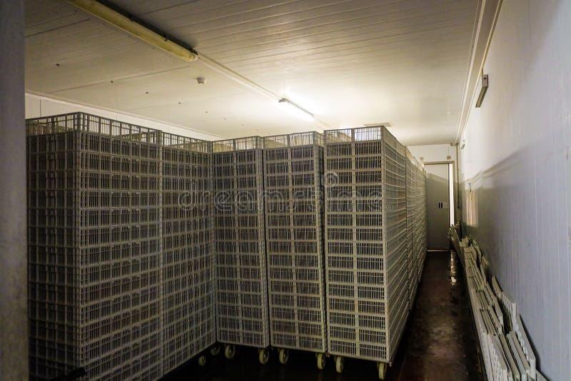 Δωμάτιο αποθήκευσης για τα κενά κάρρα και τα καλάθια hatcher στοκ φωτογραφίες με δικαίωμα ελεύθερης χρήσης