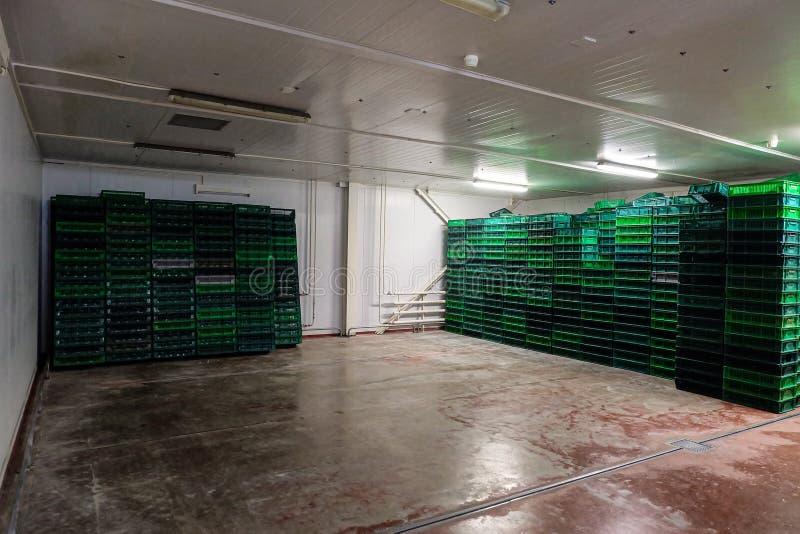 Δωμάτιο αποθήκευσης για τα κενά καλάθια και τα κιβώτια hatcher στοκ φωτογραφία με δικαίωμα ελεύθερης χρήσης