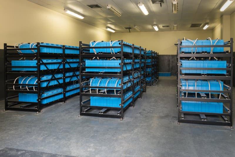 Δωμάτιο μπαταριών, δωμάτιο που χρησιμοποιείται στην εφεδρική ή uninterruptible δύναμη στοκ φωτογραφία με δικαίωμα ελεύθερης χρήσης
