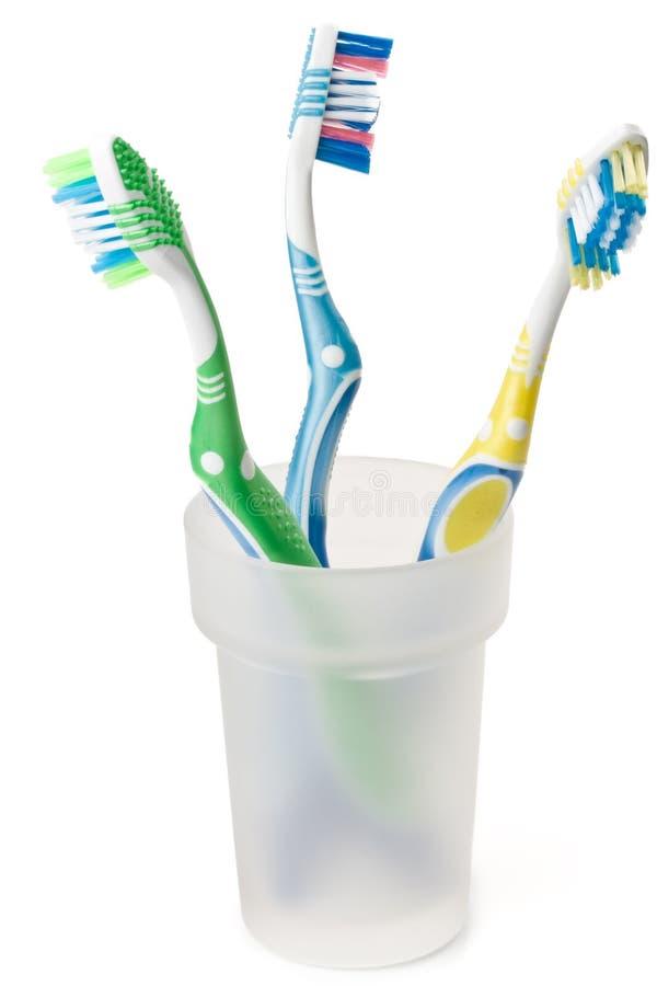 δόντι βουρτσών στοκ εικόνα
