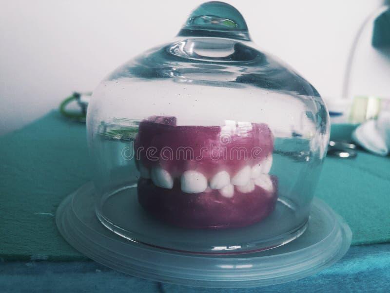 Δόντι παιδιών ` s στο κερί στοκ εικόνα
