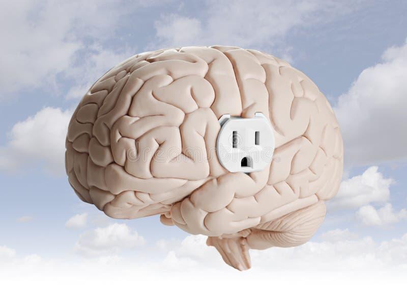 Δύναμη εγκεφάλου στοκ εικόνες με δικαίωμα ελεύθερης χρήσης