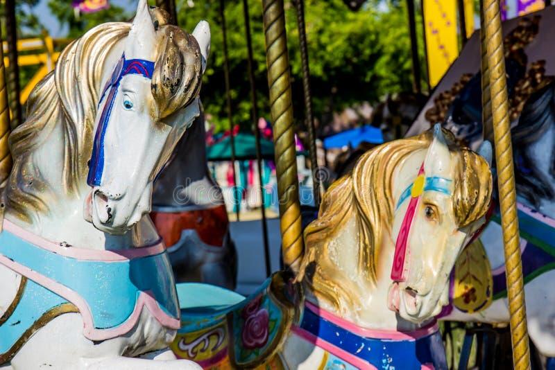 Δύο άλογα ιπποδρομίων σε εύθυμο πηγαίνουν γύρω από στοκ εικόνες με δικαίωμα ελεύθερης χρήσης