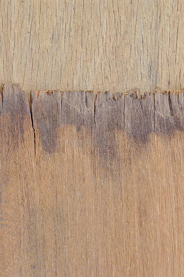 Δύο άνευ ραφής ξύλινες συστάσεις στα θερμά χρώματα Ξύλινο πλαίσιο με δύο διαφορετικούς τύπους ξύλινων συστάσεων Δύο διαφορετικοί  στοκ φωτογραφία με δικαίωμα ελεύθερης χρήσης