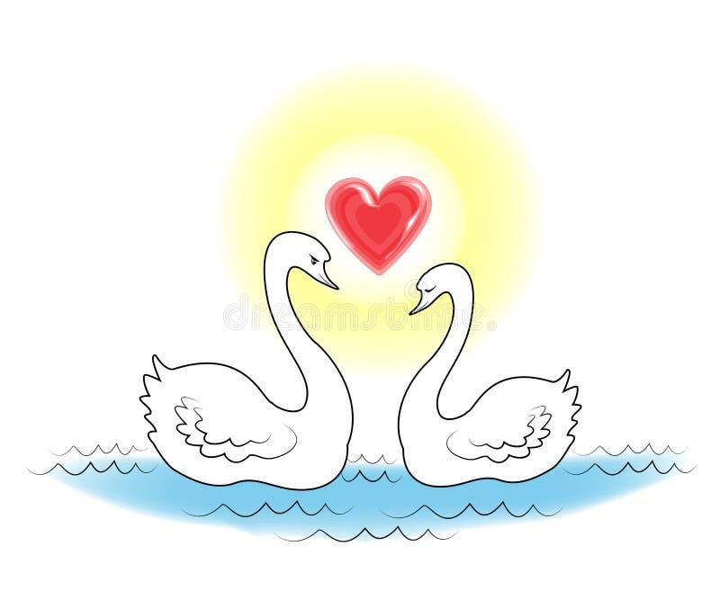 Δύο άσπροι κύκνοι Τα πουλιά ερωτευμένα κολυμπούν στο νερό Ο ήλιος λάμπει με μορφή της καρδιάς Ρομαντική αγάπη r διανυσματική απεικόνιση