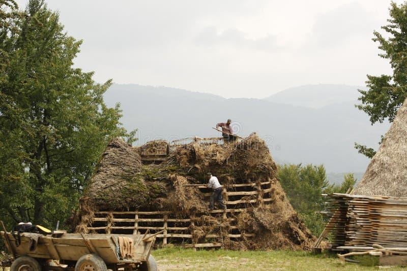 Δύο άτομα χωρών που εργάζονται σε μια ξύλινη στέγη που καλύπτει την με το σανό στοκ φωτογραφία με δικαίωμα ελεύθερης χρήσης