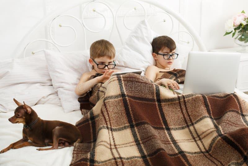 Δύο αγόρια παίζουν στο lap-top και την ταμπλέτα με το σκυλί στο κρεβάτι στοκ εικόνα