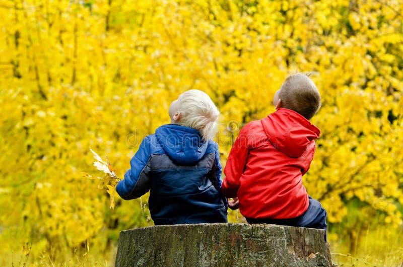 Δύο αγόρια που κάθονται σε ένα δέντρο περπατούν βαριά στο δάσος και να ανατρέξουν φθινοπώρου υποστηρίξτε την όψη στοκ φωτογραφία με δικαίωμα ελεύθερης χρήσης