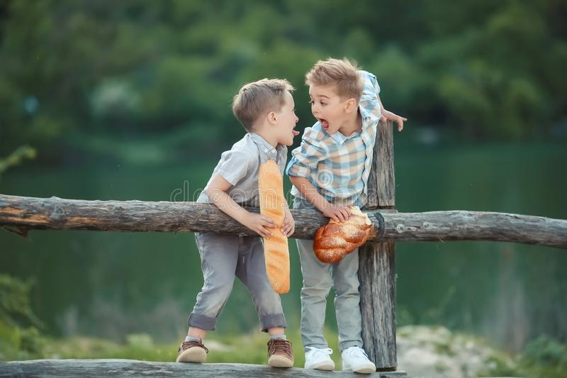 Δύο αγόρια στο φράκτη που ψάχνει κάτι στοκ εικόνα με δικαίωμα ελεύθερης χρήσης