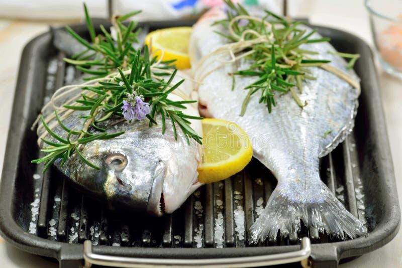 Δύο ακατέργαστα ψάρια στοκ φωτογραφίες με δικαίωμα ελεύθερης χρήσης