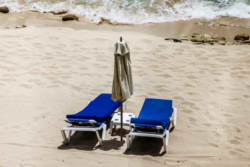 Δύο αργόσχολοι και ωκεανός παραλιών στοκ φωτογραφία με δικαίωμα ελεύθερης χρήσης