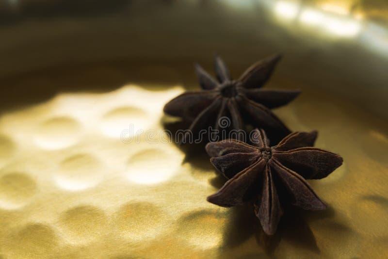 Δύο αστέρων γλυκάνισο στο πιάτο στοκ φωτογραφία με δικαίωμα ελεύθερης χρήσης