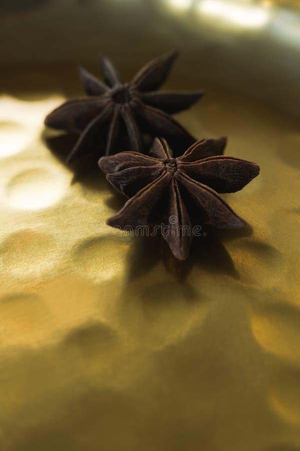Δύο αστέρων γλυκάνισο στο πιάτο στοκ φωτογραφίες