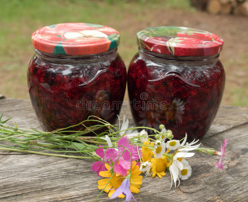 Δύο βάζα της μαρμελάδας που συλλέγονται από τις άγριες φράουλες στοκ φωτογραφία με δικαίωμα ελεύθερης χρήσης