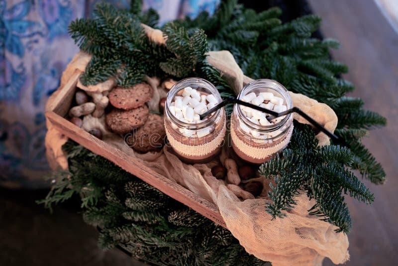 Δύο βάζα του κακάου με τα μπισκότα στοκ εικόνα με δικαίωμα ελεύθερης χρήσης
