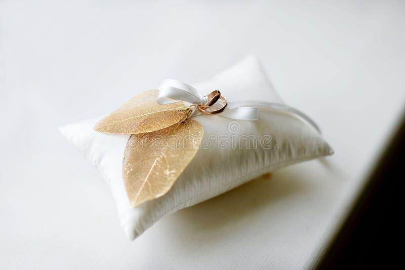 Δύο γαμήλια δαχτυλίδια σε ένα μαξιλάρι στοκ εικόνα