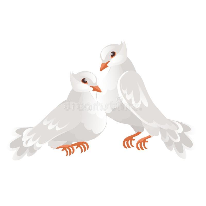Δύο γαμήλια περιστέρια που απομονώνονται στο άσπρο υπόβαθρο σύμβολο της αγάπης και του γάμου Διανυσματική απεικόνιση κινηματογραφ διανυσματική απεικόνιση