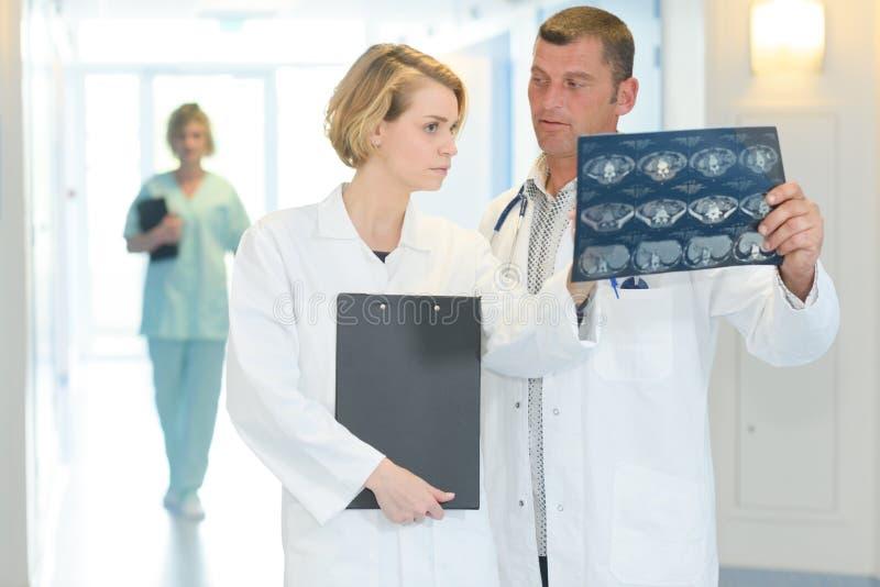 Δύο γιατροί με την των ακτίνων X ανίχνευση σπονδυλικών στηλών στο νοσοκομείο στοκ φωτογραφία με δικαίωμα ελεύθερης χρήσης