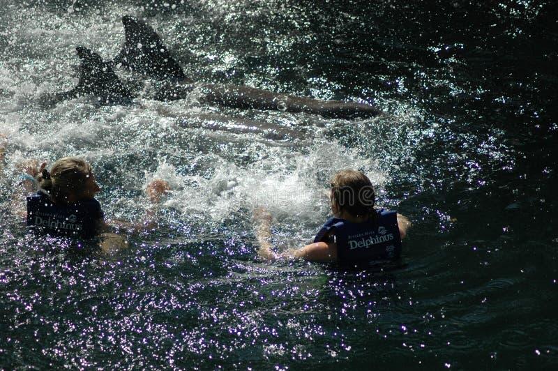 Δύο γυναίκες με δύο δελφίνια στο Μεξικό στοκ φωτογραφία