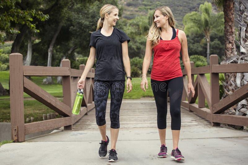 Δύο γυναίκες που περπατούν και που επιλύουν από κοινού στοκ εικόνες