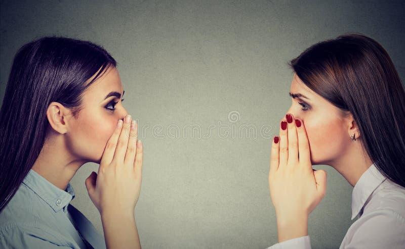 Δύο γυναίκες που ψιθυρίζουν ένα μυστικό κουτσομπολιού ο ένας στον άλλο στοκ εικόνες με δικαίωμα ελεύθερης χρήσης