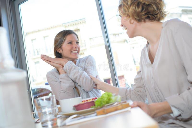 Δύο γυναίκες στον καφέ μετά από να ψωνίσει στοκ φωτογραφία με δικαίωμα ελεύθερης χρήσης