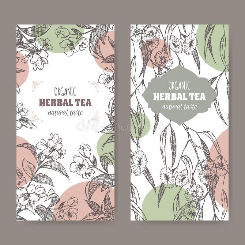 Δύο ετικέτες για το οργανικό βοτανικό τσάι ευκαλύπτων και jasmine ελεύθερη απεικόνιση δικαιώματος