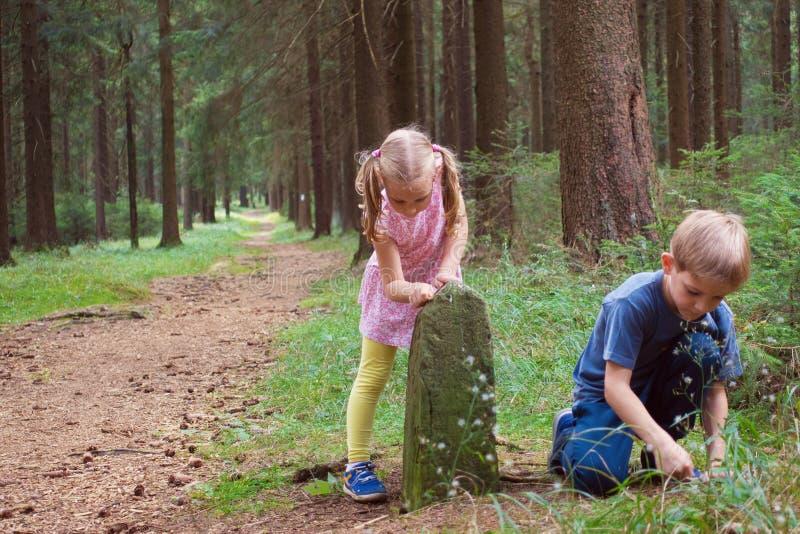 Δύο ευτυχείς αμφιθαλείς που παίζουν στο δάσος στοκ φωτογραφία με δικαίωμα ελεύθερης χρήσης