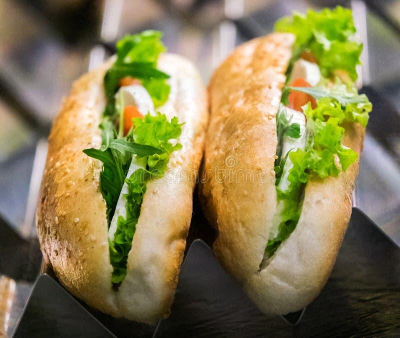 Δύο εύγευστα σάντουιτς στο μετρητή στοκ εικόνες με δικαίωμα ελεύθερης χρήσης