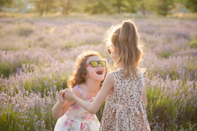 Δύο εύθυμα μικρά κορίτσια στα φορέματα και τα γυαλιά ηλίου μεταξύ του καλοκαιριού τομέων λουλουδιών στοκ φωτογραφία με δικαίωμα ελεύθερης χρήσης