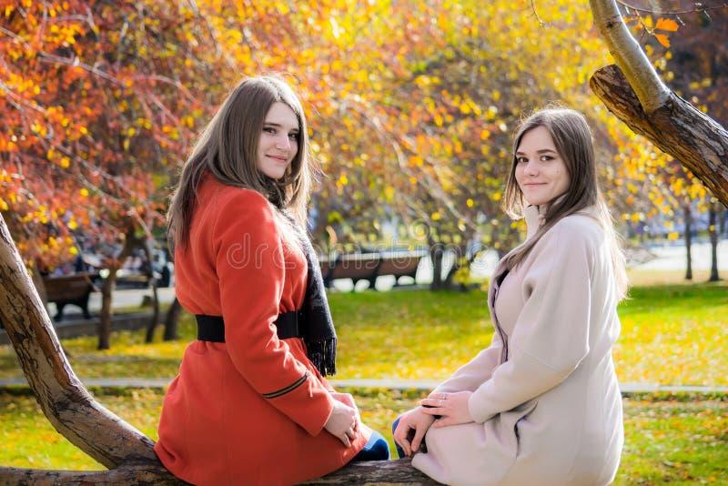 Δύο εύθυμες φίλες κάθονται σε έναν κλάδο δέντρων στην ισοτιμία στοκ εικόνα με δικαίωμα ελεύθερης χρήσης