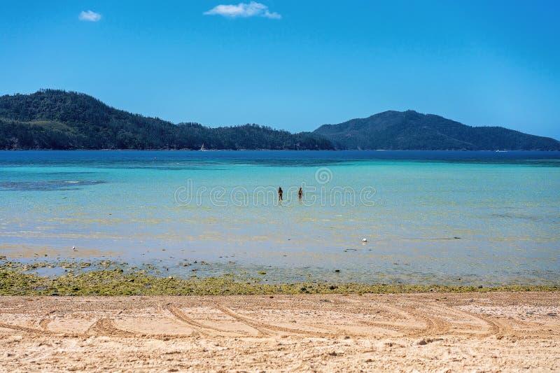Δύο θηλυκά Wading στον ωκεανό του τροπικού νησιού στοκ εικόνα με δικαίωμα ελεύθερης χρήσης