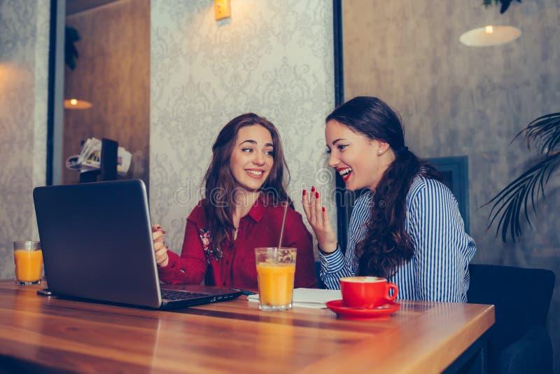Δύο θηλυκοί φίλοι χρησιμοποιώντας το lap-top και πίνοντας τον καφέ από κοινού στοκ εικόνες