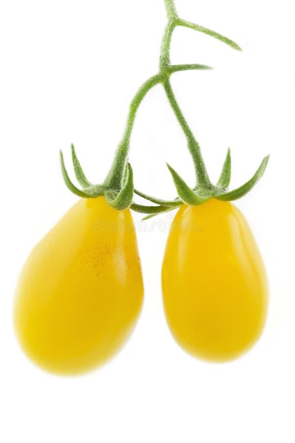 Δύο κίτρινες pear-shaped ντομάτες στοκ εικόνες με δικαίωμα ελεύθερης χρήσης