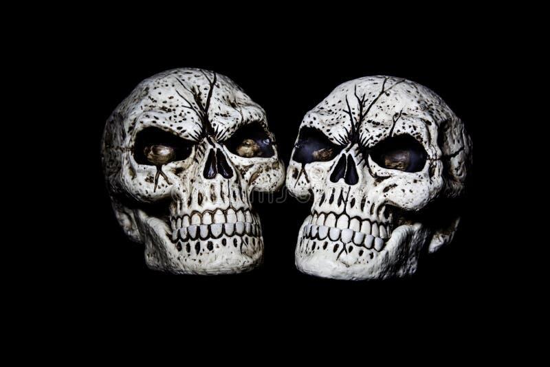 Δύο κεφάλια είναι καλύτερα από ένα στοκ φωτογραφίες με δικαίωμα ελεύθερης χρήσης
