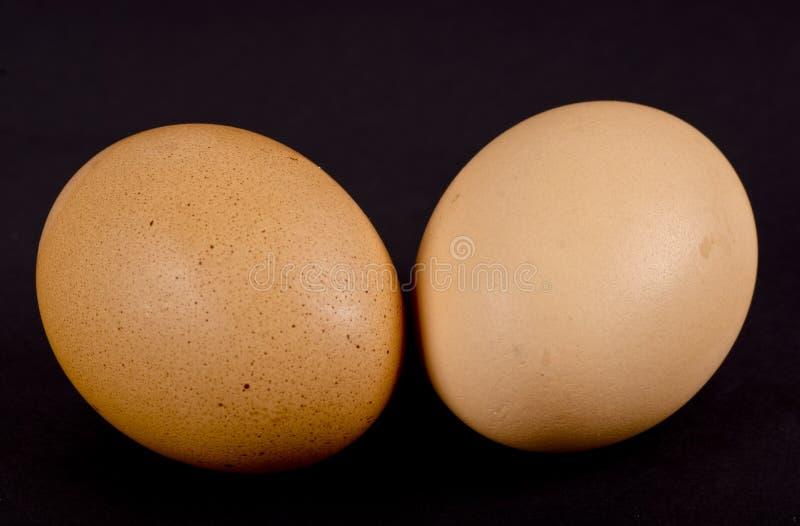 Δύο με καφέ κέλυφος αυγά κοτόπουλου στοκ φωτογραφίες