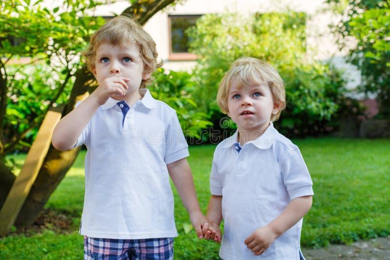 Δύο μικρά αγόρια αμφιθαλών που έχουν τη διασκέδαση υπαίθρια στην οικογένεια κοιτάζουν στοκ φωτογραφία