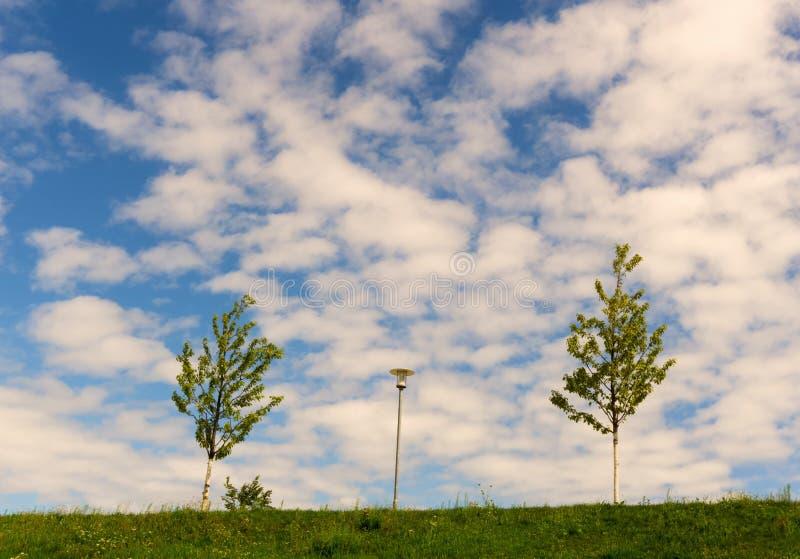 Δύο μικρά δέντρα και ένας λαμπτήρας κάτω από έναν νεφελώδη θερινό ουρανό στοκ φωτογραφίες