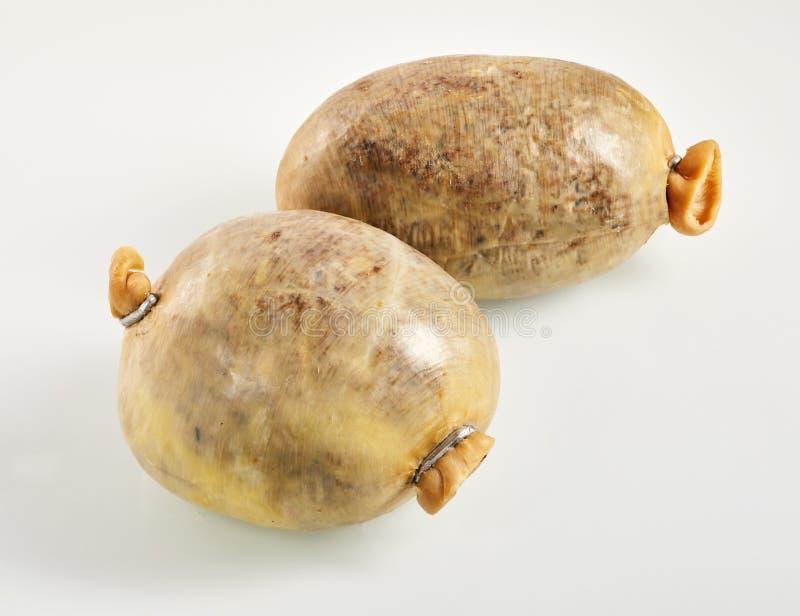 Δύο μικρά σκωτσέζικα haggis στοκ φωτογραφία με δικαίωμα ελεύθερης χρήσης