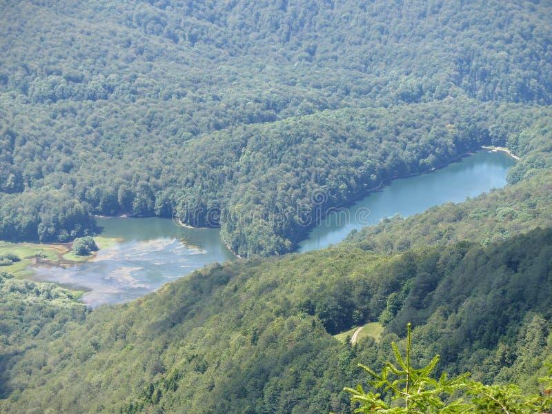 Δύο μικρές λίμνες του βουνού στο δάσος που είδε από ψηλό ένα από ένα εθνικό πάρκο του Μαυροβουνίου στοκ εικόνες με δικαίωμα ελεύθερης χρήσης