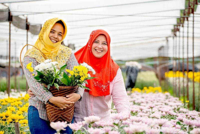 Δύο μουσουλμανικά κορίτσια εργαζομένων στέκονται και χαμογελούν μεταξύ των ρόδινων και κίτρινων λουλουδιών στον κήπο κατά τη διάρ στοκ φωτογραφίες