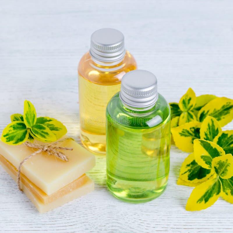 Δύο μπουκάλια του φυσικού σαμπουάν τρίχας και της χειροποίητης οργανικής τρίχας σαπουνίζουν το φραγμό με τις εγκαταστάσεις στοκ εικόνες με δικαίωμα ελεύθερης χρήσης