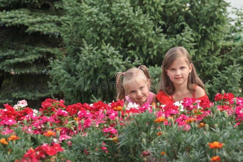 Δύο ξανθά κορίτσια με κόκκινο φόρεμα, στριμωγμένα πίσω από λουλούδια στοκ φωτογραφίες