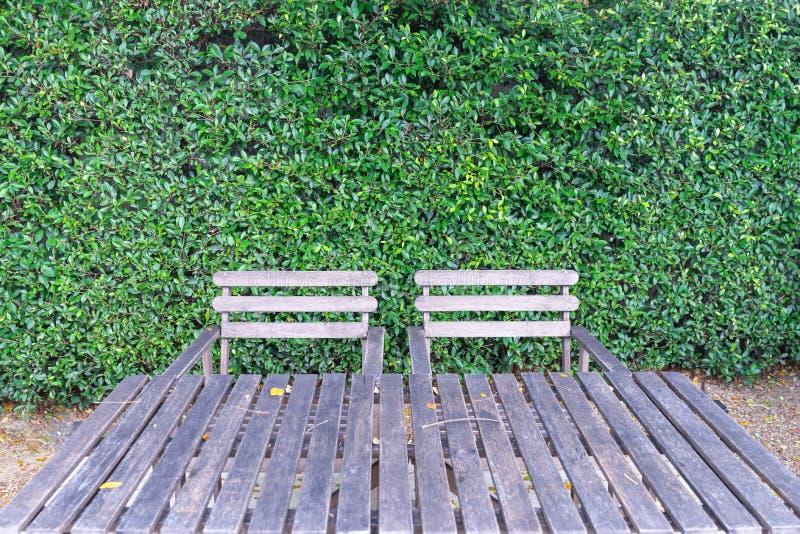 Δύο ξύλινες καρέκλες και ξύλινος πίνακας ενάντια στον πράσινο τοίχο φύλλων στοκ φωτογραφίες