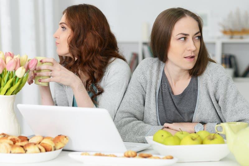 Δύο οργισμένες νεαρές γυναίκες που κάθονται στο τραπέζι στοκ εικόνες με δικαίωμα ελεύθερης χρήσης